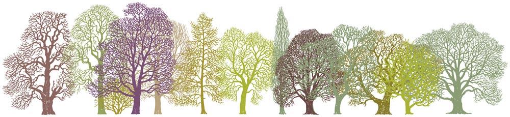 Trees Pattern Design as Border